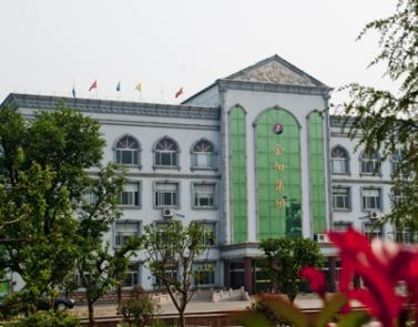 山东金阳矿业集团