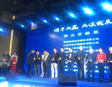 """祝贺山东必威88app登录电气公司荣膺""""绿地集团突出贡献奖"""""""